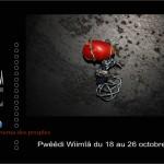 festival_affiche_2013