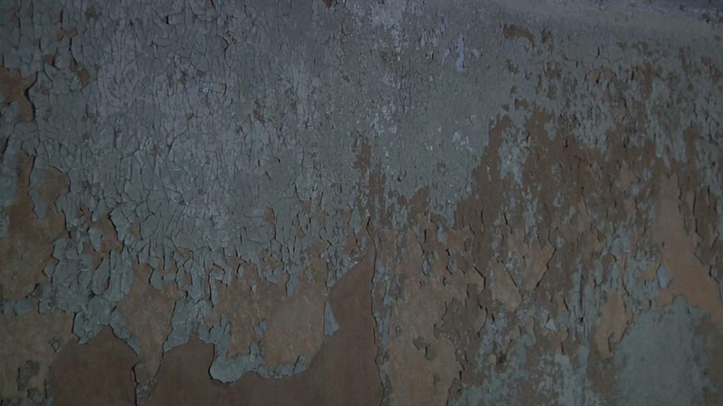 DAL RITORNO muro ewb
